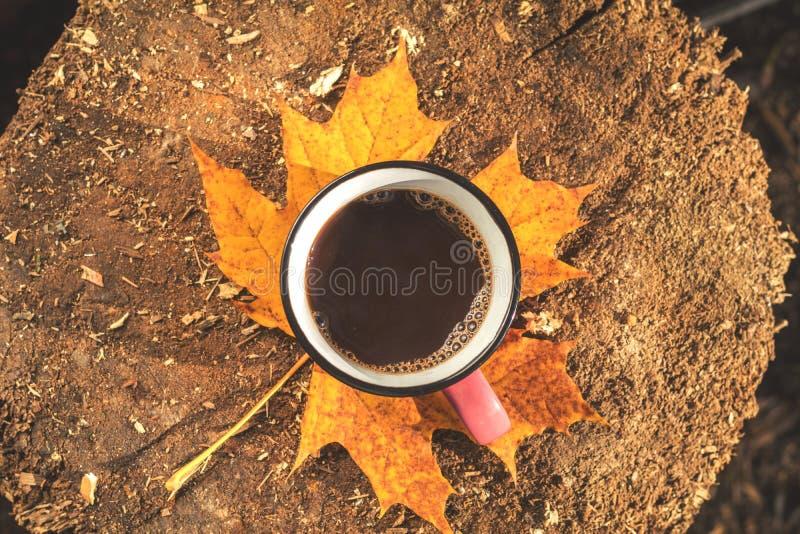 Φλιτζάνι του καφέ, κίτρινος σφένδαμνος και δρύινα φύλλα στον ξύλινο πίνακα στοκ φωτογραφία