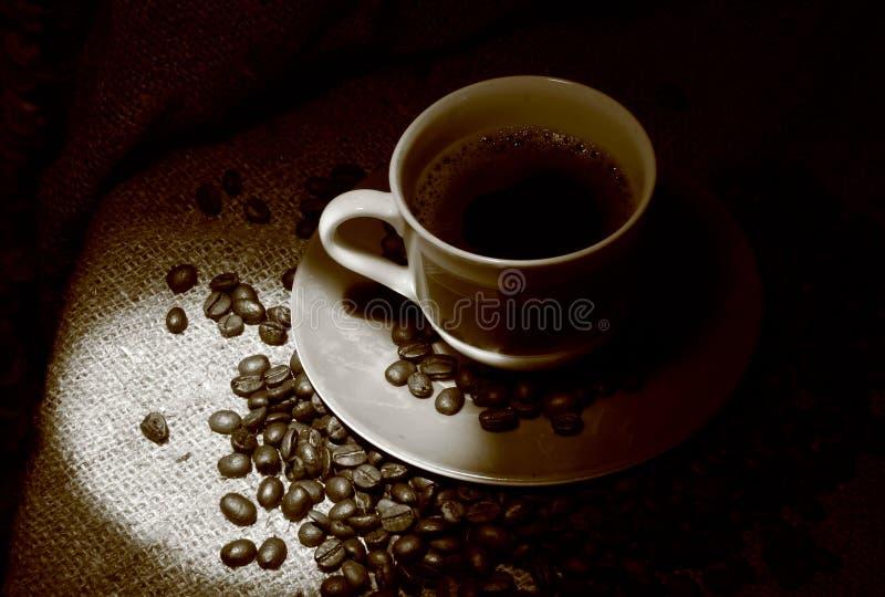 Φλιτζάνι του καφέ με τα φασόλια καφέ που στέκονται σε μια απόλυση στοκ φωτογραφία με δικαίωμα ελεύθερης χρήσης
