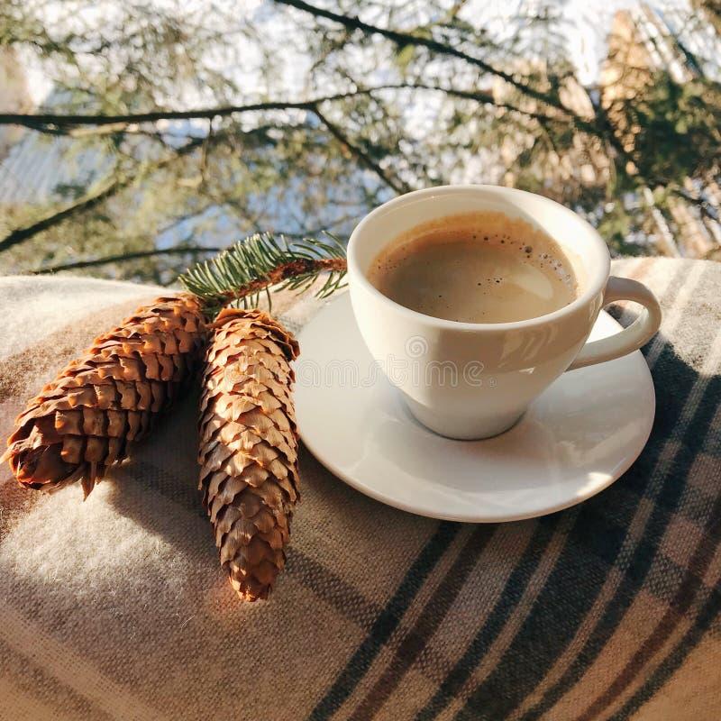 Φλιτζάνι του καφέ στο θέρετρο βουνών με τον κώνο στοκ εικόνες