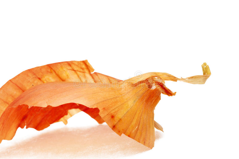 φλούδα κρεμμυδιών στοκ φωτογραφία