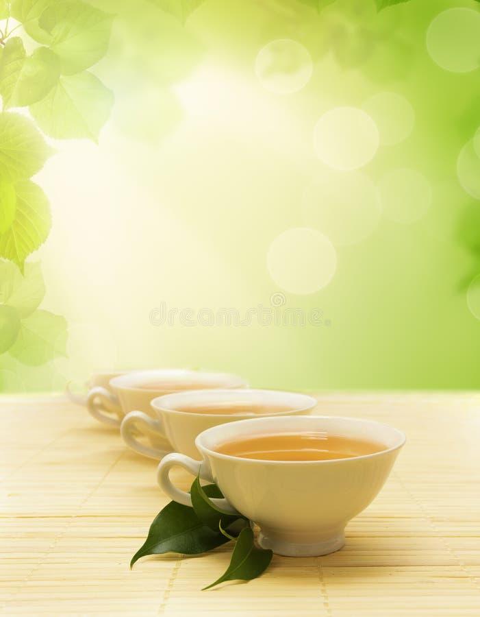 Φλυτζάνια του τσαγιού και ενός πράσινου κλαδίσκου στο χαλί στοκ εικόνες