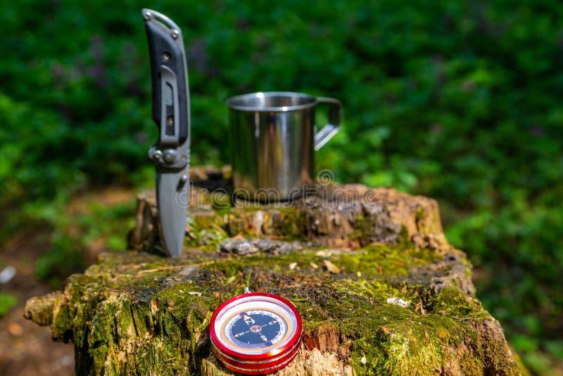 Φλυτζάνι και μαχαίρι χάλυβα τουριστών στο θερινό δάσος στοκ εικόνα