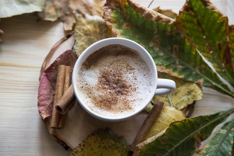 Φλυτζάνι καφέ φθινοπώρου, cappuccino με την κανέλα, ξηρά φύλλα, κορυφή β στοκ φωτογραφία με δικαίωμα ελεύθερης χρήσης