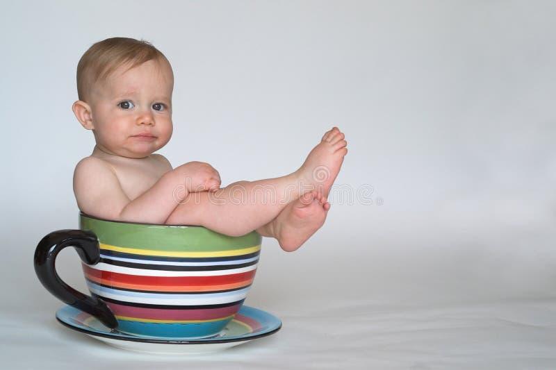 φλυτζάνι μωρών στοκ εικόνες