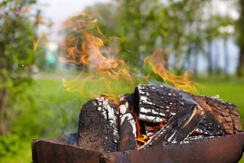 φλόγα πυρκαγιάς στοκ εικόνα
