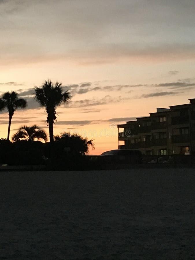 Φοίνικας ηλιοβασιλέματος στοκ φωτογραφία
