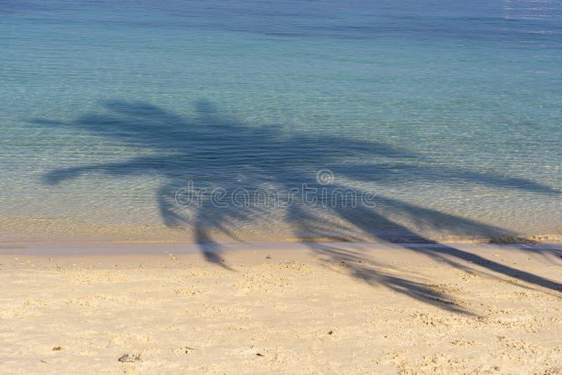 Φοίνικας καρύδων σκιών πέρα από την παραλία άμμου κοντά στο μπλε θαλάσσιο νερό στην Ταϊλάνδη Έννοια καλοκαιριού, ταξιδιού, διακοπ στοκ φωτογραφίες με δικαίωμα ελεύθερης χρήσης