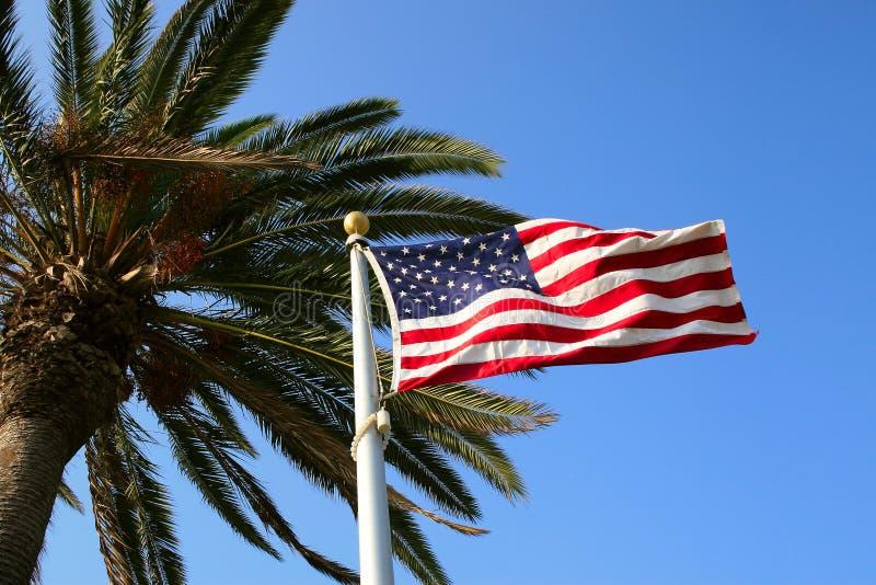 φοίνικας σημαιών εμείς στοκ φωτογραφία με δικαίωμα ελεύθερης χρήσης