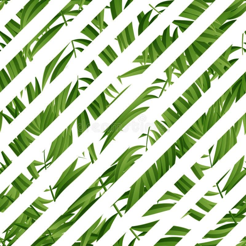 φοίνικας φύλλων τροπικός άνευ ραφής διάνυσμα απεικόνιση αποθεμάτων