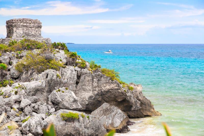 Φοίνικες, θάλασσα, φοίνικες Η καραϊβική θάλασσα, Μεξικό Tulum στοκ εικόνες με δικαίωμα ελεύθερης χρήσης