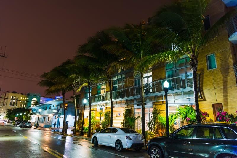 Φοίνικες και ζωηρόχρωμα κτήρια στο Μαϊάμι Μπιτς τη νύχτα στοκ εικόνες