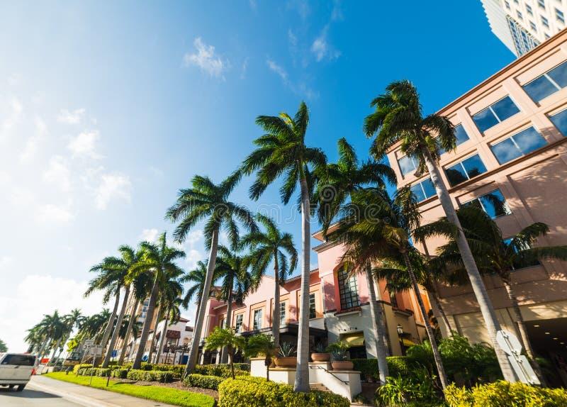 Φοίνικες και κομψά κτήρια στο δυτικό Palm Beach στοκ εικόνες
