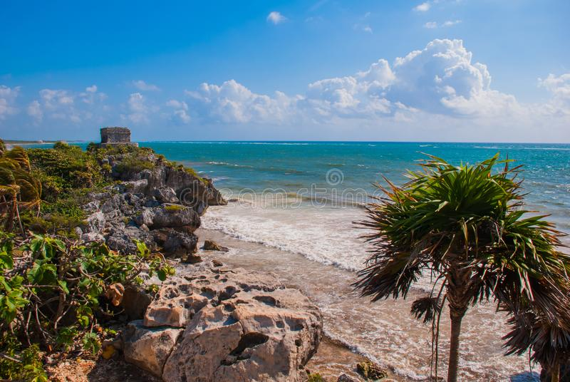 Φοίνικες και των Μάγια καταστροφές στο υπόβαθρο Riviera Maya στις Καραϊβικές Θάλασσες Tulum, Yucatan, Μεξικό στοκ φωτογραφίες