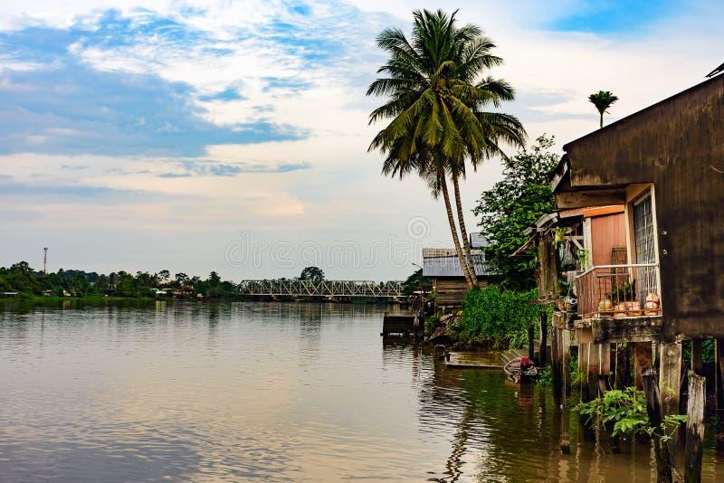 Φοίνικες καρύδων στην όχθη ποταμού με το παλαιό σπίτι στοκ εικόνες