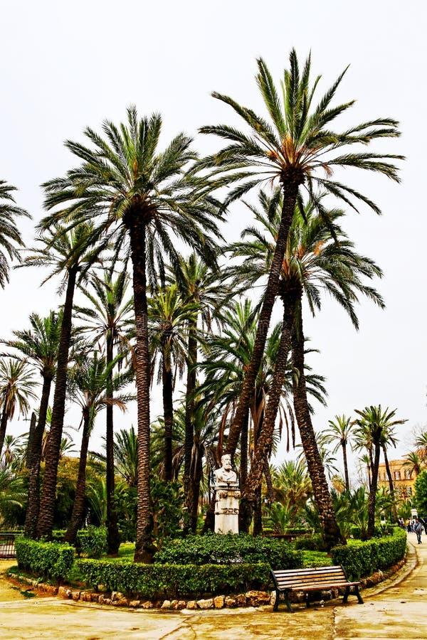 Φοίνικες στη βίλα Bonanno, Παλέρμο πάρκων στοκ φωτογραφία