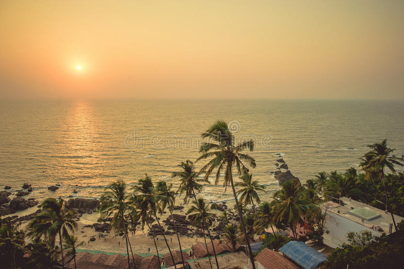 Φοίνικες στις ακτίνες του ηλιοβασιλέματος στην παραλία υποβάθρου και στοκ φωτογραφία