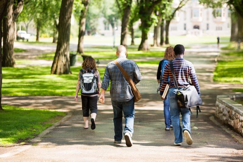 Φοιτητές πανεπιστημίου που περπατούν στο δρόμο πανεπιστημιουπόλεων στοκ εικόνες