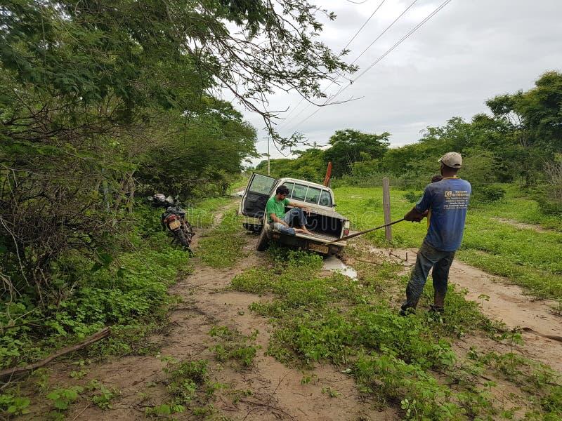 Φορτηγό που κακομεταχειρίζεται κατά τη διάρκεια του δάσους ερευνών στοκ εικόνα με δικαίωμα ελεύθερης χρήσης