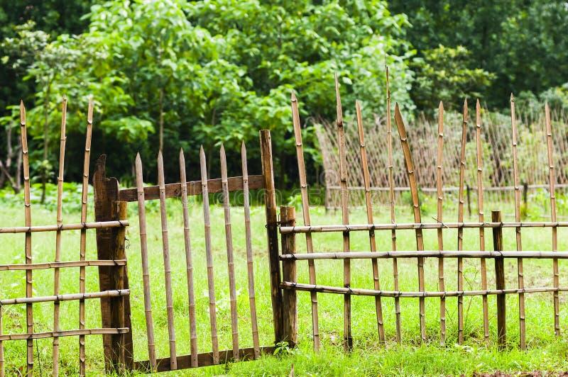 Φράκτης μπαμπού στοκ εικόνες με δικαίωμα ελεύθερης χρήσης