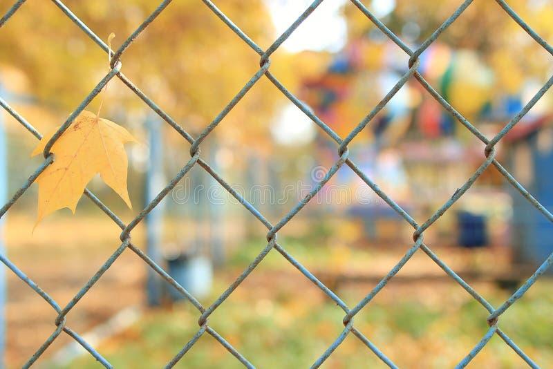 Φράκτης στο πάρκο φθινοπώρου στοκ εικόνα με δικαίωμα ελεύθερης χρήσης