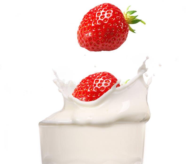 φράουλα παφλασμών γάλακτ&o στοκ εικόνα