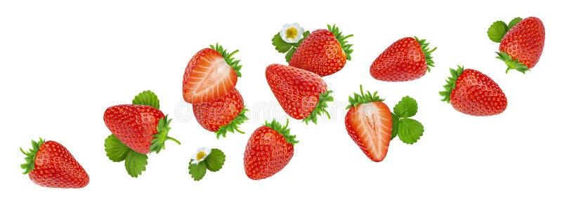 Φράουλα που απομονώνεται στο άσπρο υπόβαθρο με το ψαλίδισμα της πορείας στοκ φωτογραφία με δικαίωμα ελεύθερης χρήσης