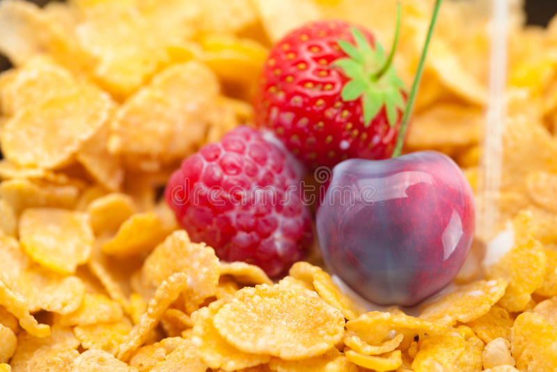Φράουλα, σμέουρο, κεράσι, γάλα και νιφάδες στοκ φωτογραφία με δικαίωμα ελεύθερης χρήσης