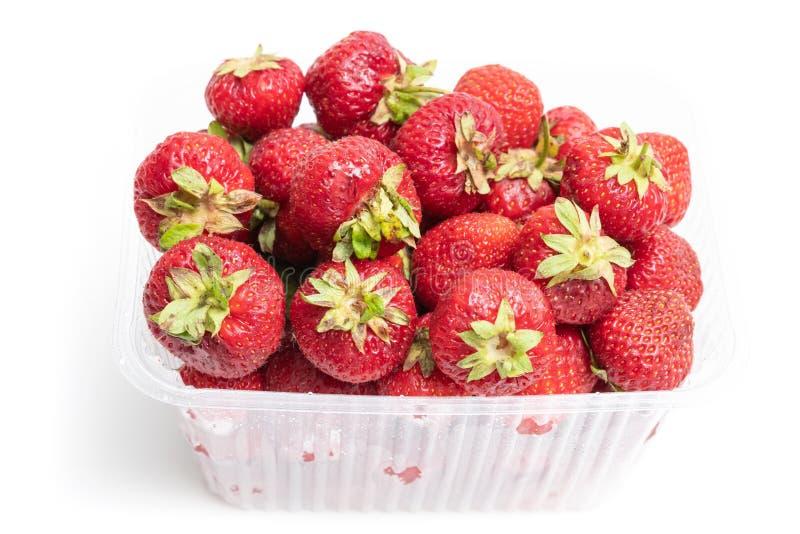 φράουλα στο πλαστικό διαφανές κιβώτιο εμπορευματοκιβωτίων, που απομονώνεται στο άσπρο υπόβαθρο στοκ φωτογραφίες