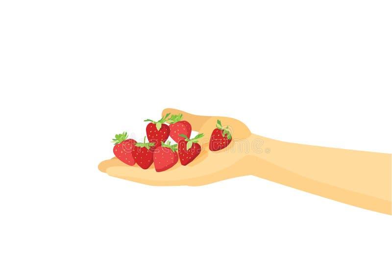 Φράουλα υπό εξέταση διανυσματική απεικόνιση