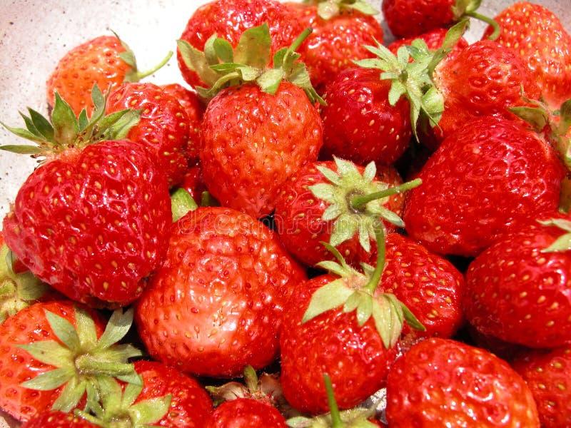 Download φράουλα στοκ εικόνες. εικόνα από φράουλα, φράουλες, καρπός - 83022