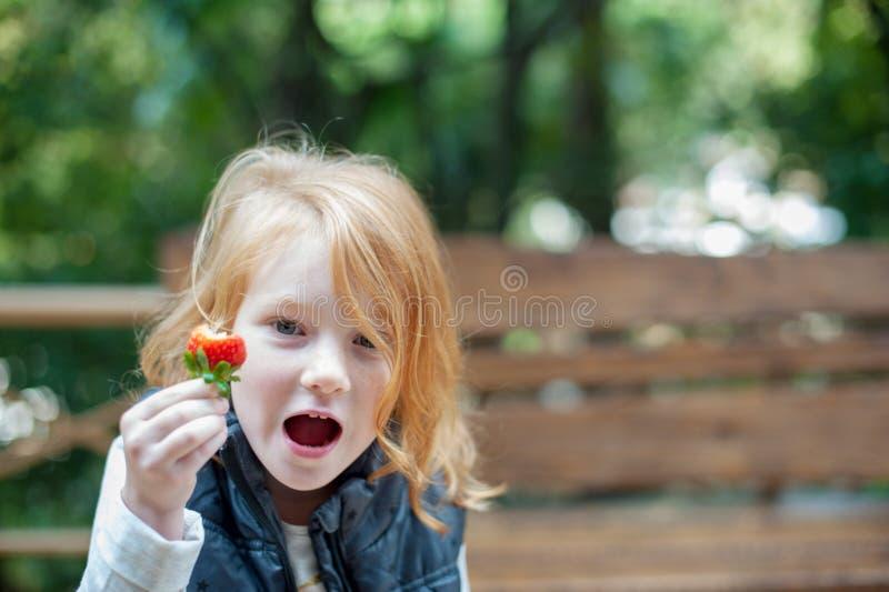 Φράουλες εκμετάλλευσης κοριτσιών στοκ εικόνες