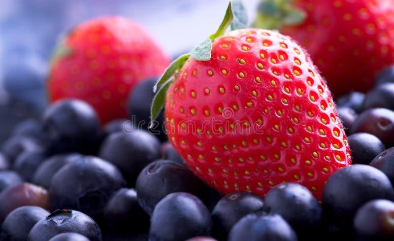φράουλες ριβησίων στοκ εικόνες