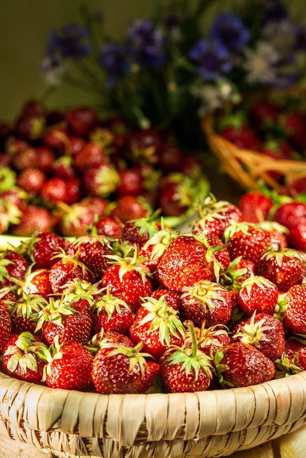 Φράουλες σε ένα καλάθι στοκ φωτογραφίες με δικαίωμα ελεύθερης χρήσης