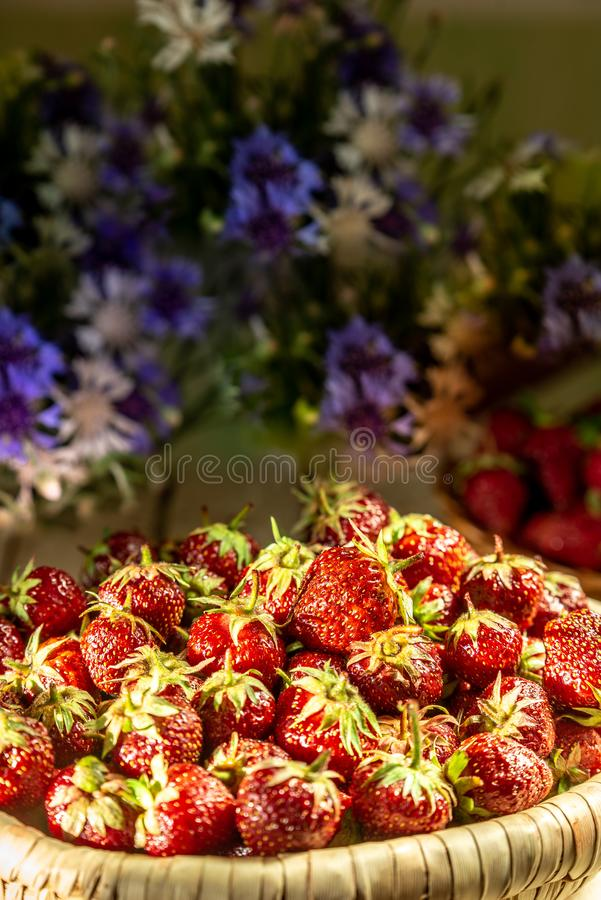 Φράουλες σε ένα καλάθι στοκ εικόνες