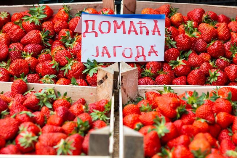 Φράουλες στην αγορά στοκ εικόνα με δικαίωμα ελεύθερης χρήσης