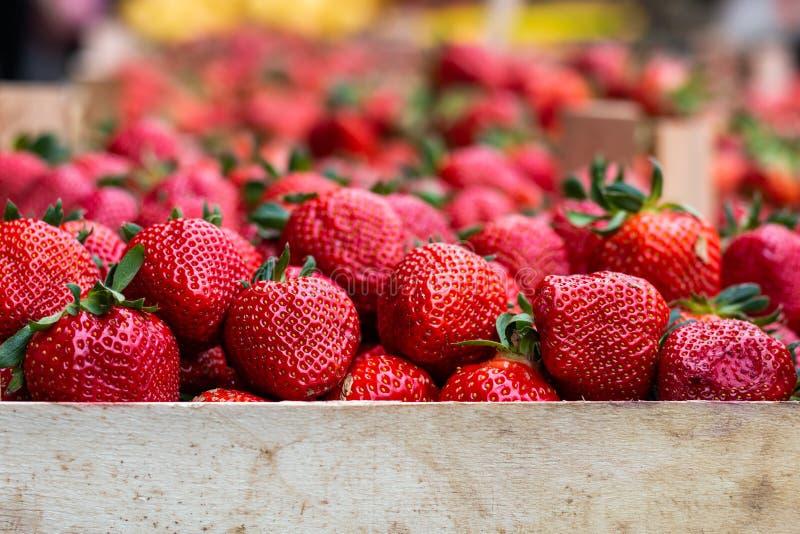 Φράουλες στην αγορά στοκ φωτογραφίες με δικαίωμα ελεύθερης χρήσης