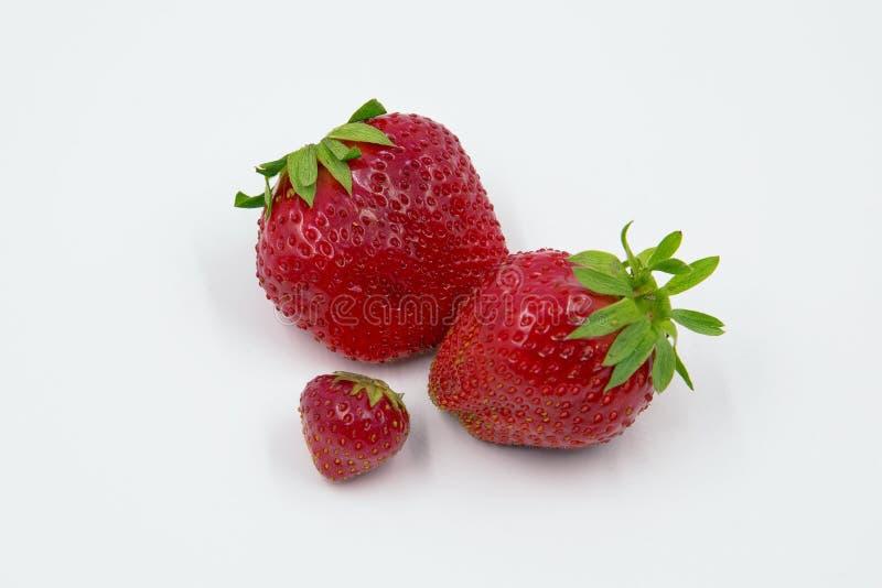 φράουλες τρία στοκ εικόνες