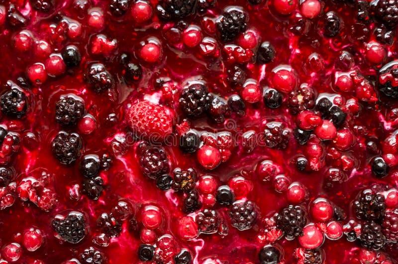 Φράουλα, βατόμουρο και σμέουρο στοκ φωτογραφία