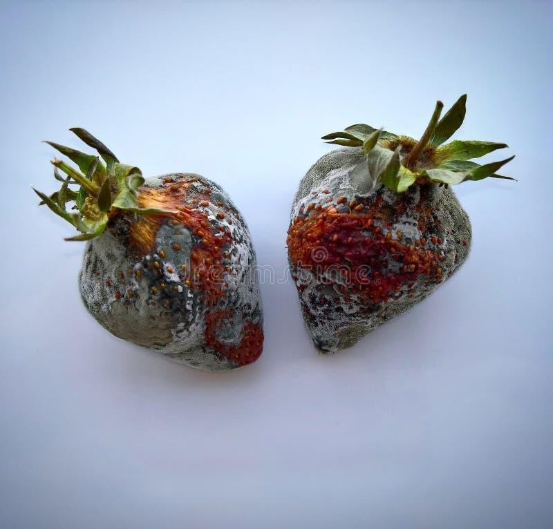 Φράουλα με τη φόρμα στοκ εικόνα