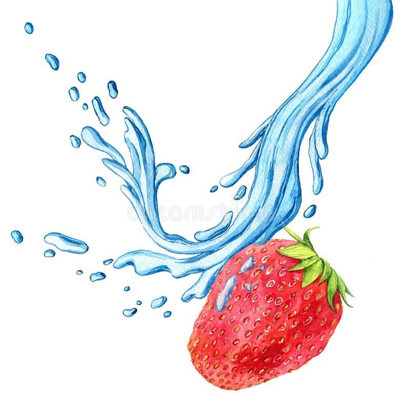 Φράουλα σχεδίων Watercolor με τον παφλασμό νερού ελεύθερη απεικόνιση δικαιώματος