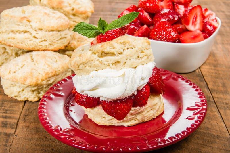 Φράουλες και κτυπημένη κρέμα στο μπισκότο στοκ φωτογραφία με δικαίωμα ελεύθερης χρήσης