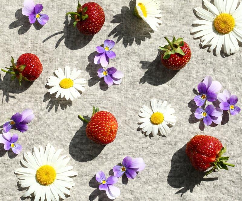 Φράουλες και λουλούδια στοκ εικόνες