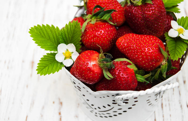 φράουλες δοχείων στοκ φωτογραφία με δικαίωμα ελεύθερης χρήσης