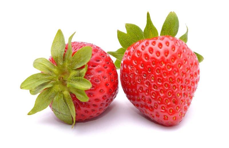 Φράουλες που απομονώνονται στην άσπρη ανασκόπηση στοκ εικόνα