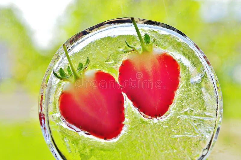 Φράουλες που παγώνουν στον πάγο στοκ εικόνες