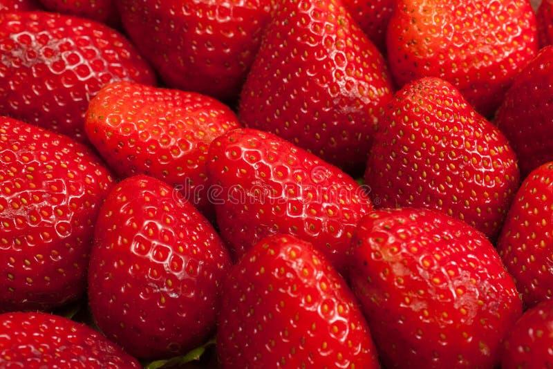 φράουλες σειράς τροφίμων ανασκόπησης στοκ εικόνες