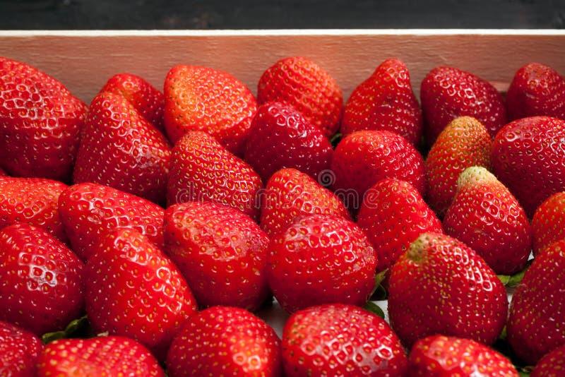 φράουλες σειράς τροφίμων ανασκόπησης στοκ φωτογραφία με δικαίωμα ελεύθερης χρήσης
