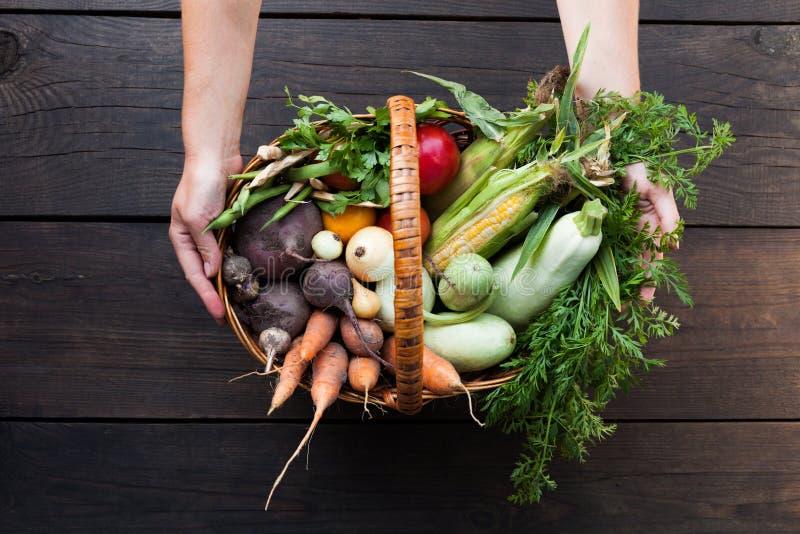 Φρέσκα αγροτικά λαχανικά, ακατέργαστη οργανική γεωργία στοκ φωτογραφία