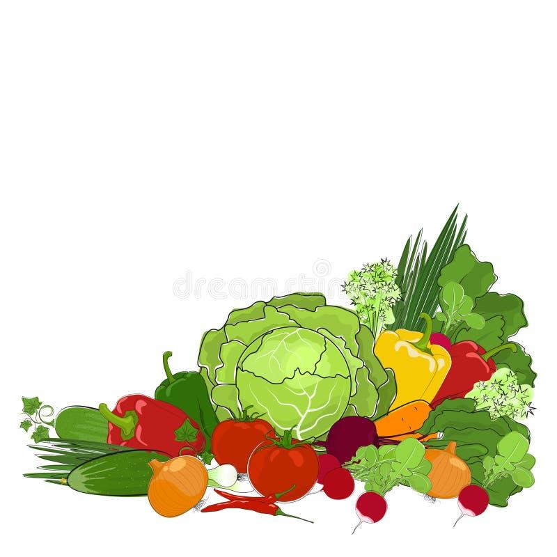 Φρέσκα ακατέργαστα λαχανικά που απομονώνονται στο λευκό ελεύθερη απεικόνιση δικαιώματος
