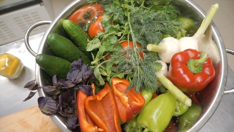 Φρέσκα ακατέργαστα λαχανικά άνοιξη συνδετήρας Χορτοφάγο υπόβαθρο τροφίμων Ντομάτες, αγγούρι, ραδίκια, φύλλα μαρουλιού στο μέταλλο στοκ φωτογραφία με δικαίωμα ελεύθερης χρήσης